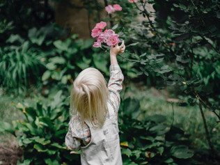 Why you should get your children into gardening