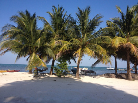 Central America - Day 11 - Caye Caulker