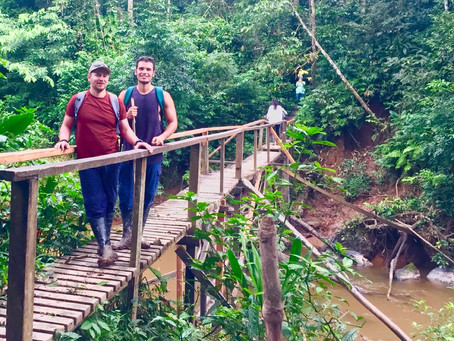 Day 22 - Amazon Day 2 - Walks, Canoes & Creatures