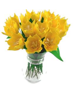 Daffodil BunchWM