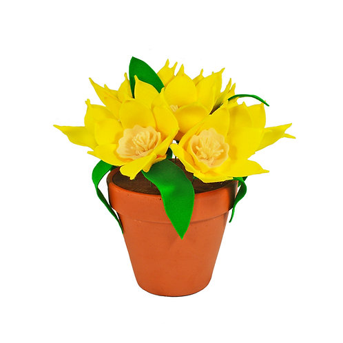 Large Daffodil Pot
