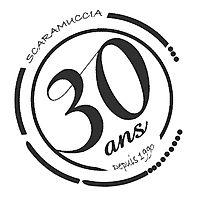 logo-30-ans_ILV2_edited_edited_edited.jp