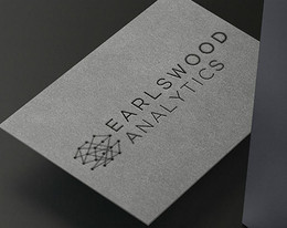 Earlswood Analytics: Branding
