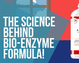 The Science Behind Enzymes: Animations