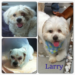 This is Larry!