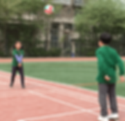 21-PE - PYP - PSPE - Grade 2 Lessons - Net Games - Volleyball.png