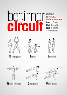 beginner-circuit-workout.jpg