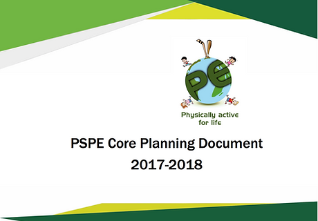 21-PE - PSPE Core Planning Document - Image.png