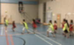 21-PE - PYP - PSPE - Grade 2 - Net Games - Volleyball.png