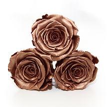 3 rose gold roses.jpg