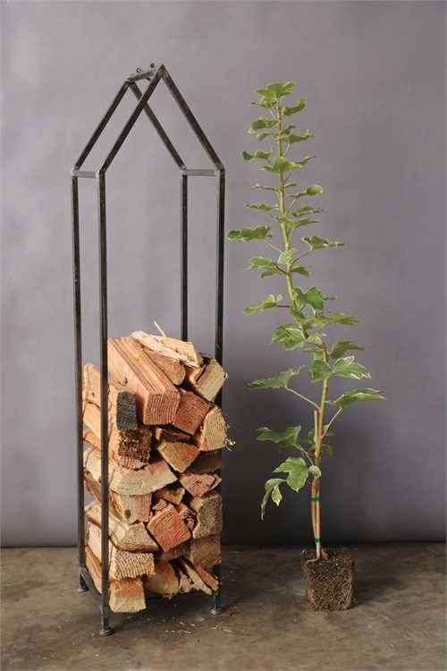 Metal House Firewood Holder $145
