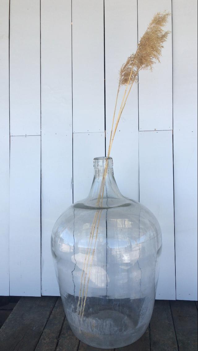 Giant Glass Jar, $160