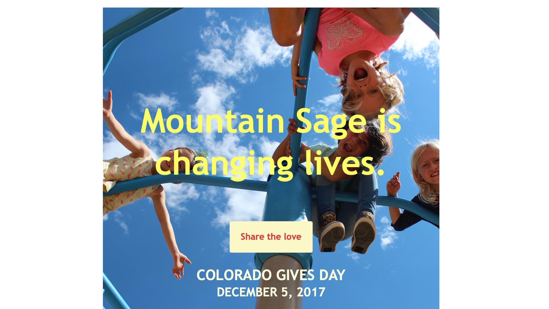 Mountain Sage Colorado Gives Day