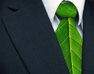 Auditeurs Environnement