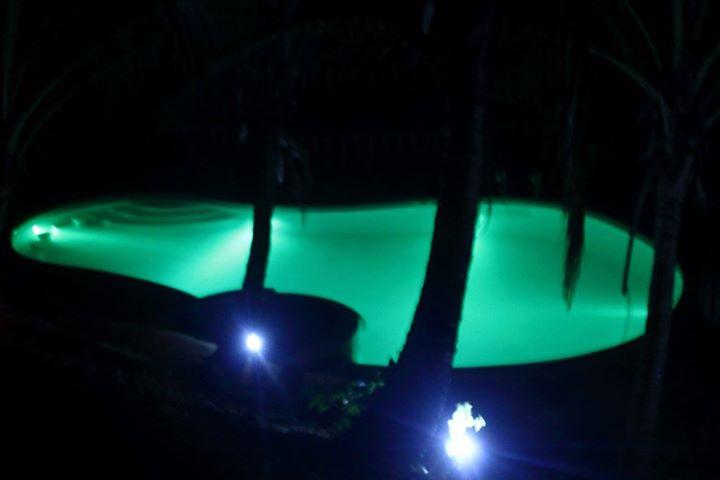 Al Hamra Jungle Resort