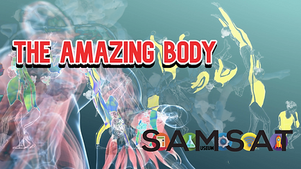 Amazing Body 2.png