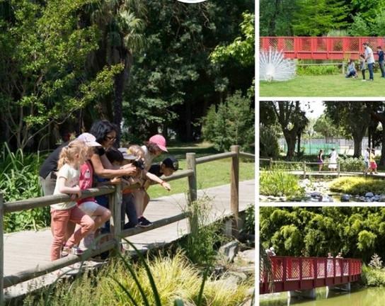 Le jardins des plantes de Saint Cyprien