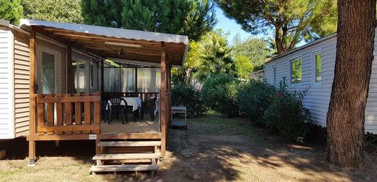 Terrasse +jardin