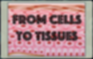 Cells to Tissues eLesson Cover.png