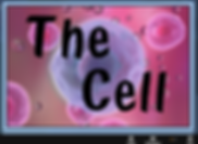 The Cell eLesson Cover.png