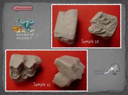 25 Fossil Lab