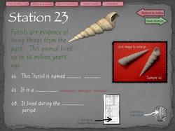 44 Fossil Lab