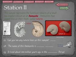32 Fossil Lab
