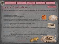 4 Fosslil Lab