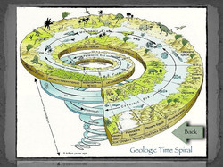 14 Fossil Lab