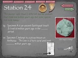 45 Fossil Lab