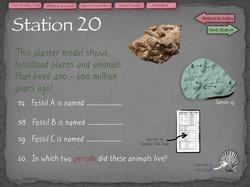 41 Fossil Lab