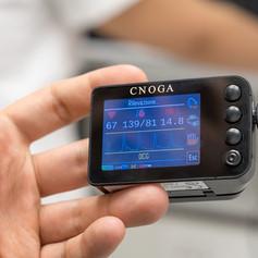 DSC00168_Cnoga_Artech-small.jpg