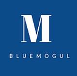 bluemogul.webp