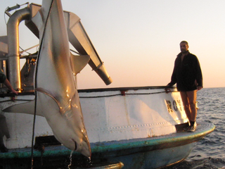 Aquaculture can be risky, Maya has the experience to deal with every aspect of farming fish