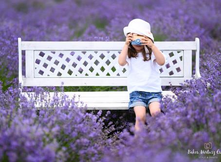 Egy darabka Provence...