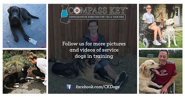 Compass Key Service Dog Trainig