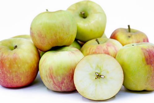 Honeycrisp Apples 88 Count