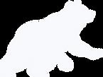 bear white.png