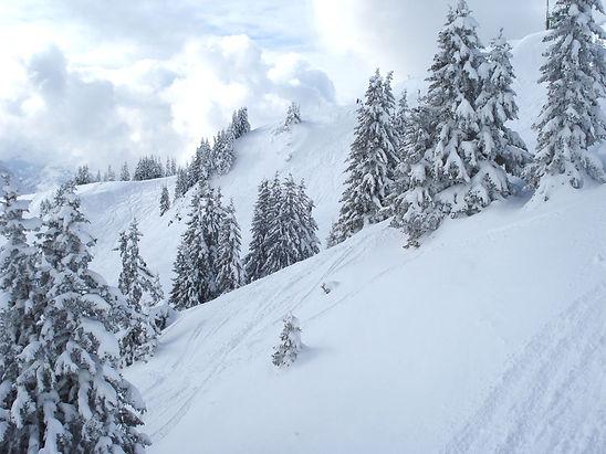 Winter in Austria 2020