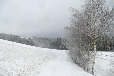 Ural Probefahrt 2020 4
