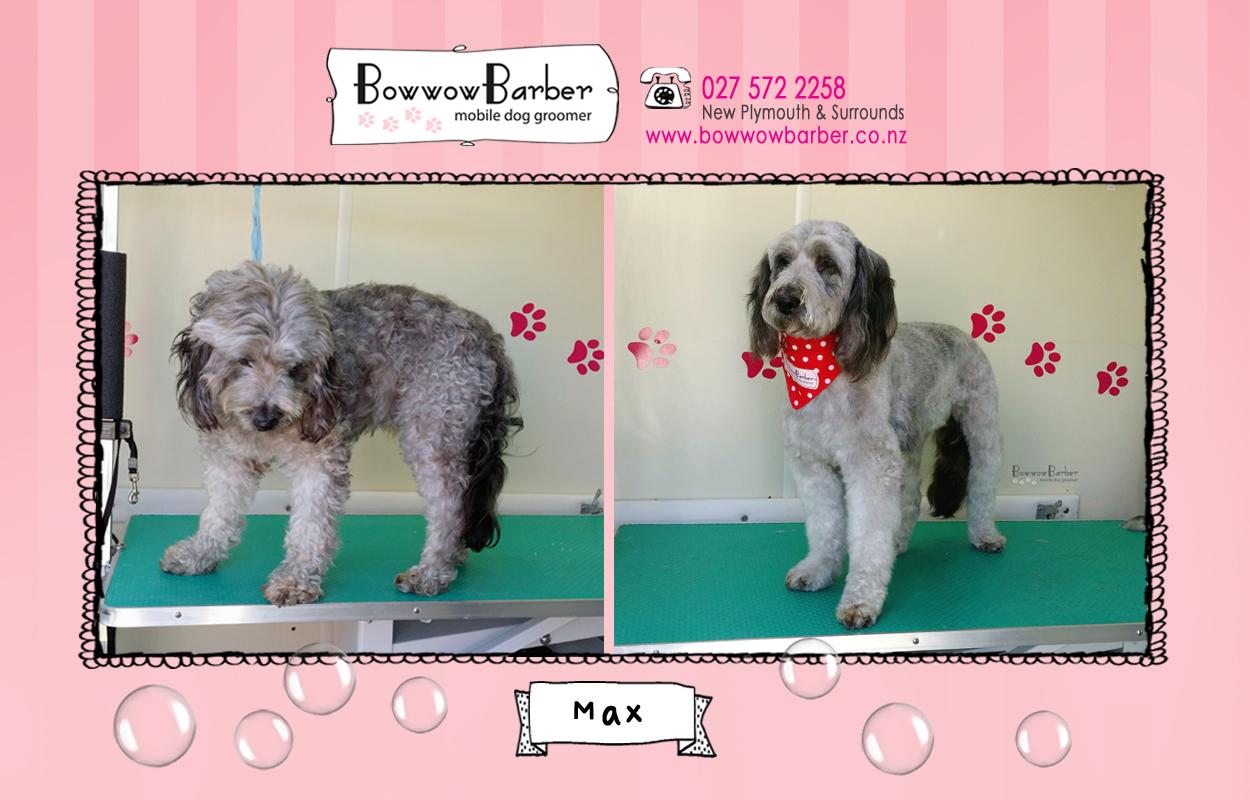 BB FB Post 49 Max copy