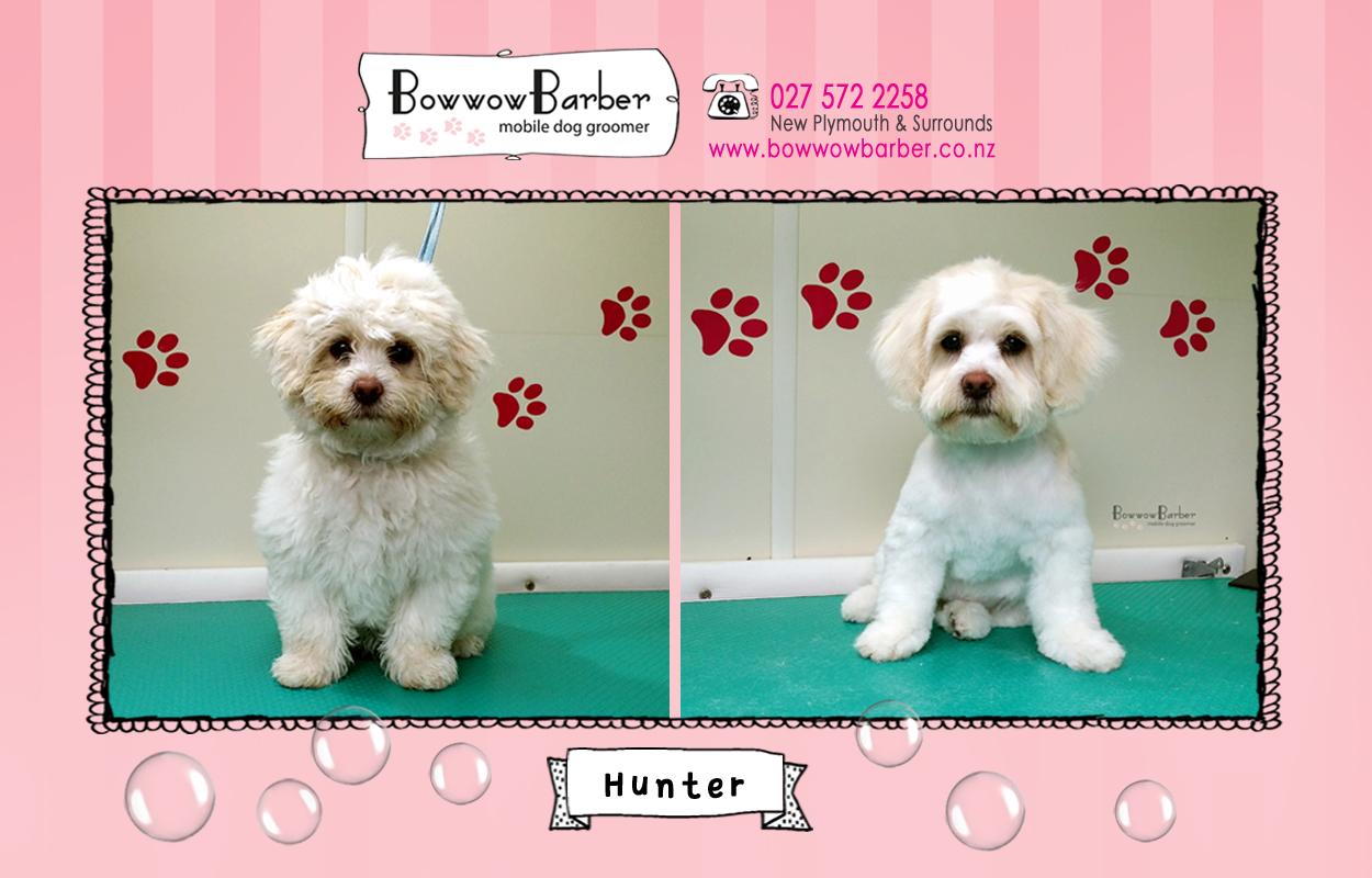 BB FB Post 55 Hunter copy