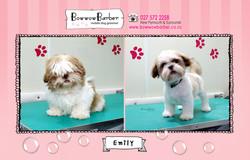 BB FB Post 71 Emily copy
