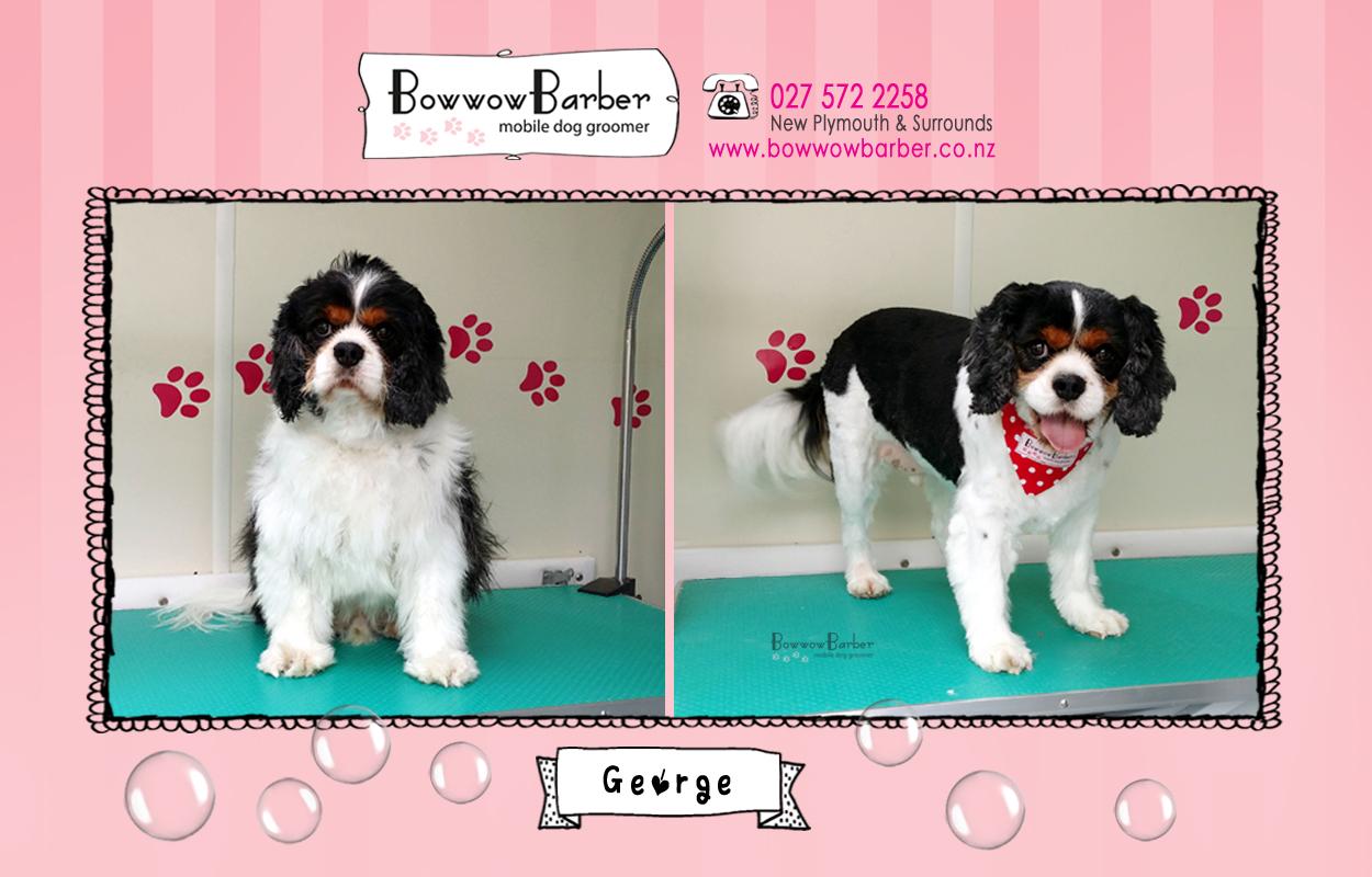 BB FB Post 43 George copy