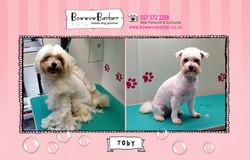 BB FB Post 100 Toby Sept Shave Off copy