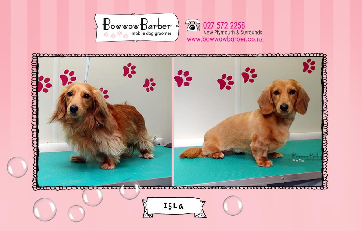 BB FB Post 33 Isla copy