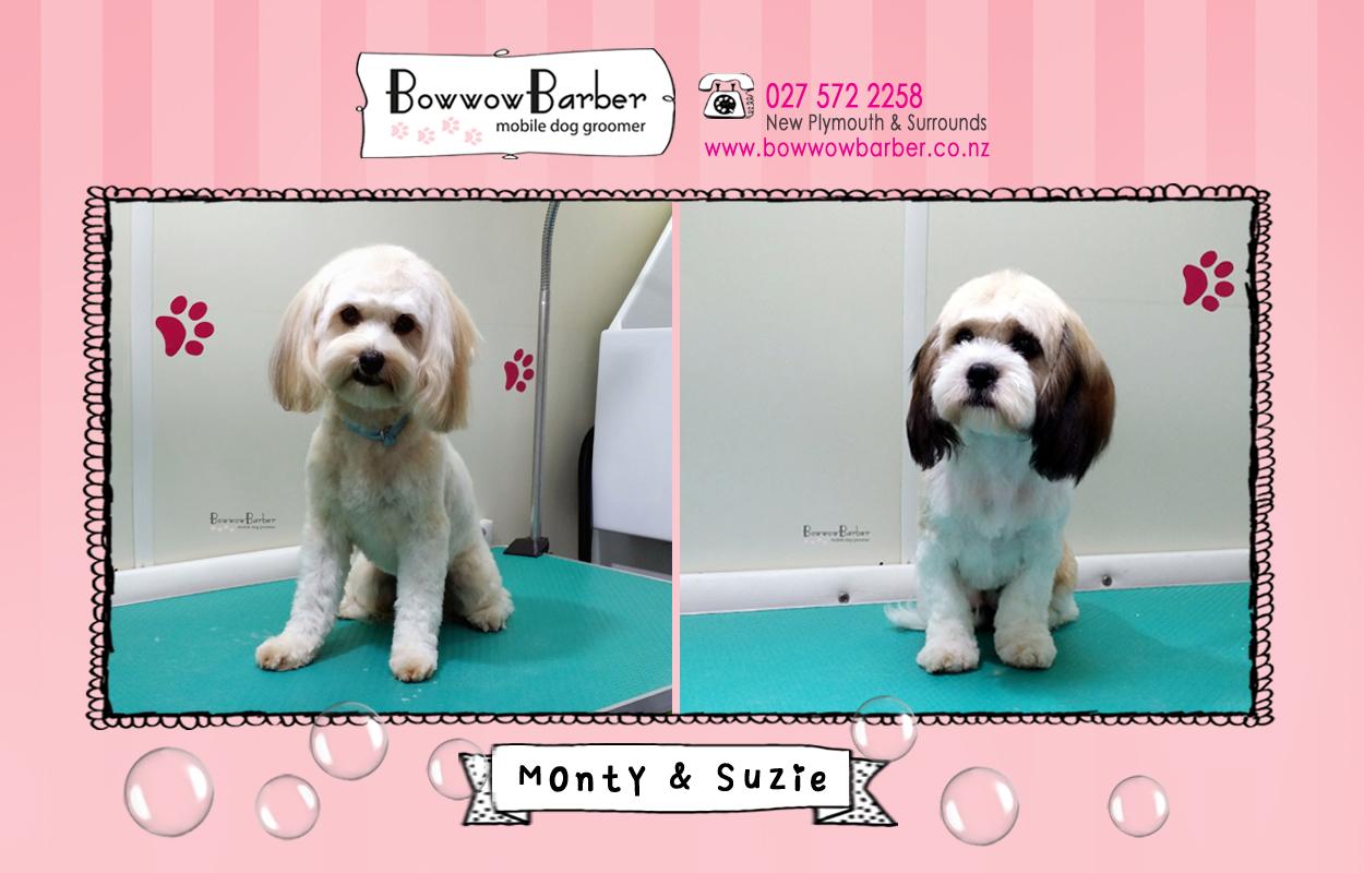 BB FB Post 70 Monty & Suzie copy