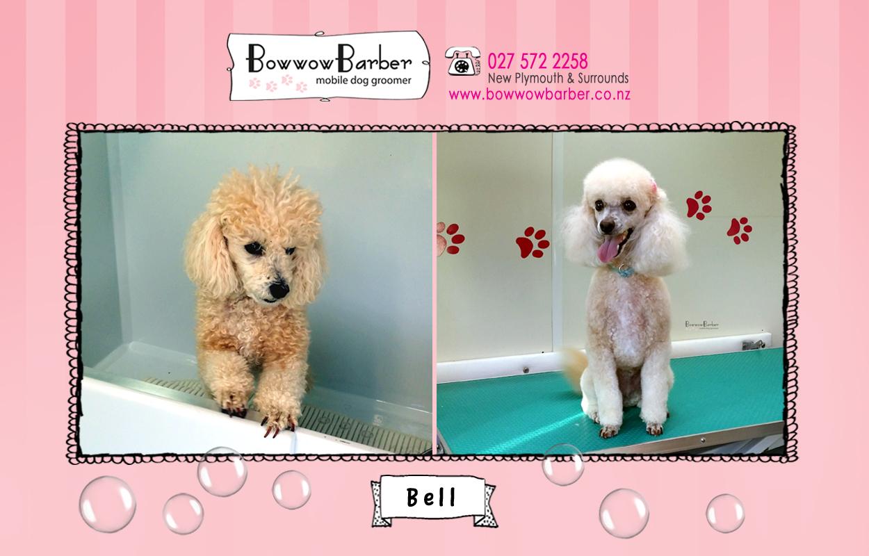 BB FB Post 102 Bell copy