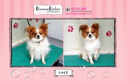 BB FB Post 97 Lucy Pap copy