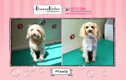 BB FB Post 115 Minnie copy